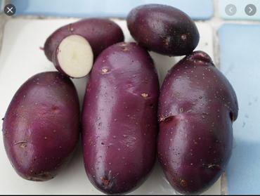 fioletowy ziemniak.png