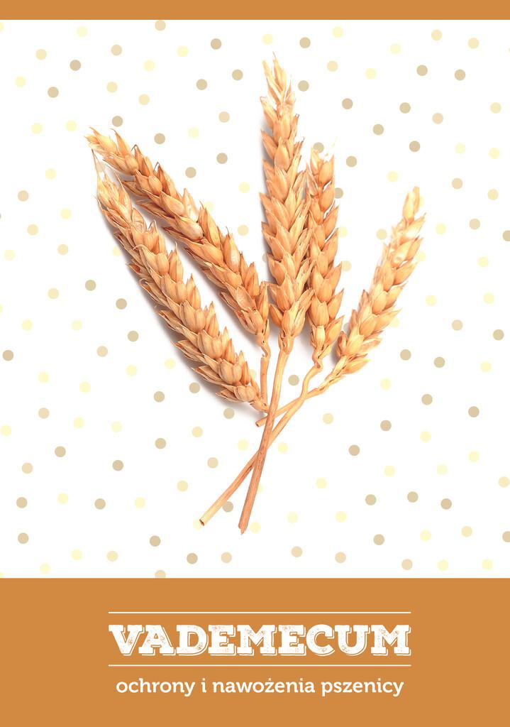 Sprawdź Vademecum ochrony i nawożenia pszenicy w księgarni igrit