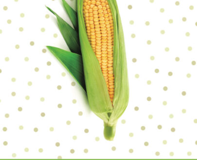 vademecum ochrony kukurydzy